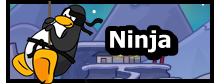 Ninja N